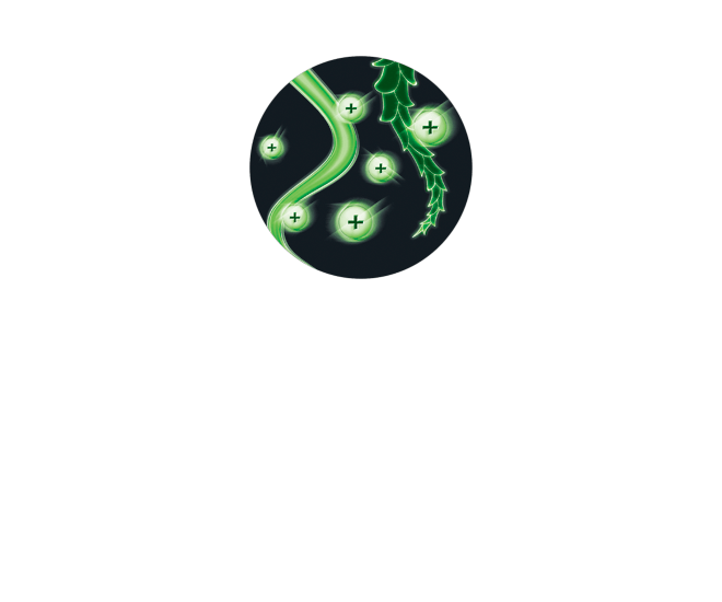 ions positivos
