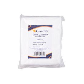Lencol-s-elastico-220-x-90-c-06un.---30GR