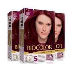 Leve-3-Pague-2-Tintura-Biocolor-Kit-Creme-6.6-Vermelho-Intenso