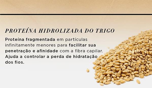 Serie Expert Absolut Repair Gold Quinoa + Protein ikesaki cosméticos