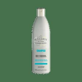 Shampoo-IL-Salone-Detox-500ml