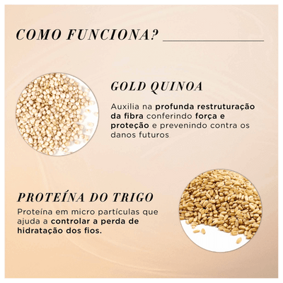 Absolut-Repair-Gold-Quinoa-Explicativo